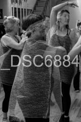 _DSC6884